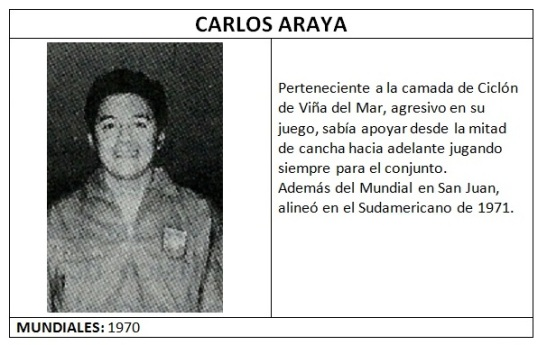araya_carlos_lamina