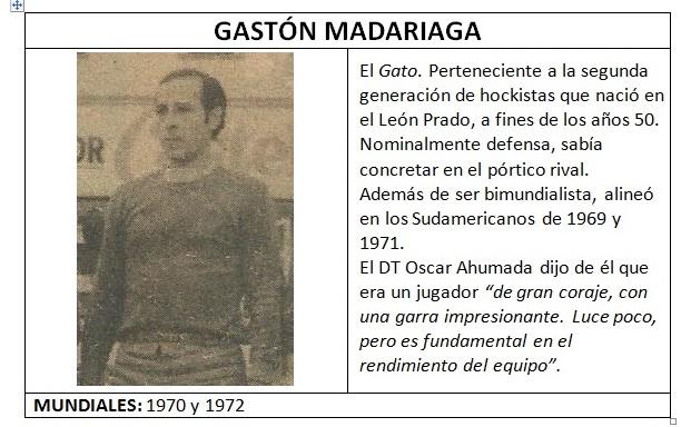 madariaga_gato_ficha