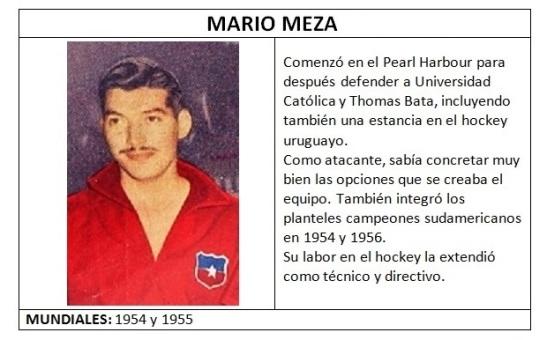 MEZA_MARIO