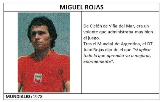 rojas_miguel_lamina