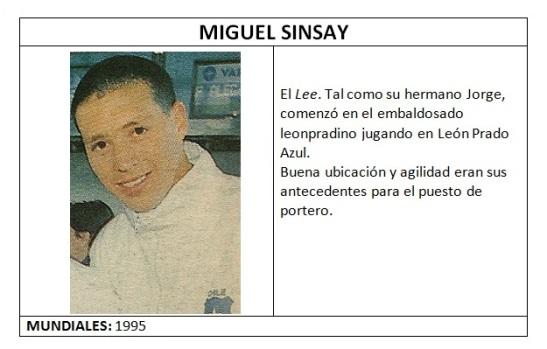sinsay_miguel_lamina
