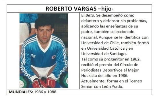 vargas_hijo_roberto_lamina